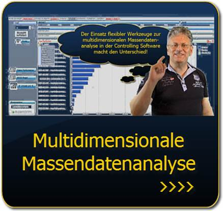 Link: Multidimensionale Massendatenanalysen mit Corporate Planning Suite